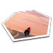 Überraschung garantiert: Urlaubsfotos auf Catan-Landschaften für Spielefans