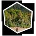 Verschenken Sie Urlaubserinnerungen auf selbst gestalten Landschaften für die Siedler von Catan